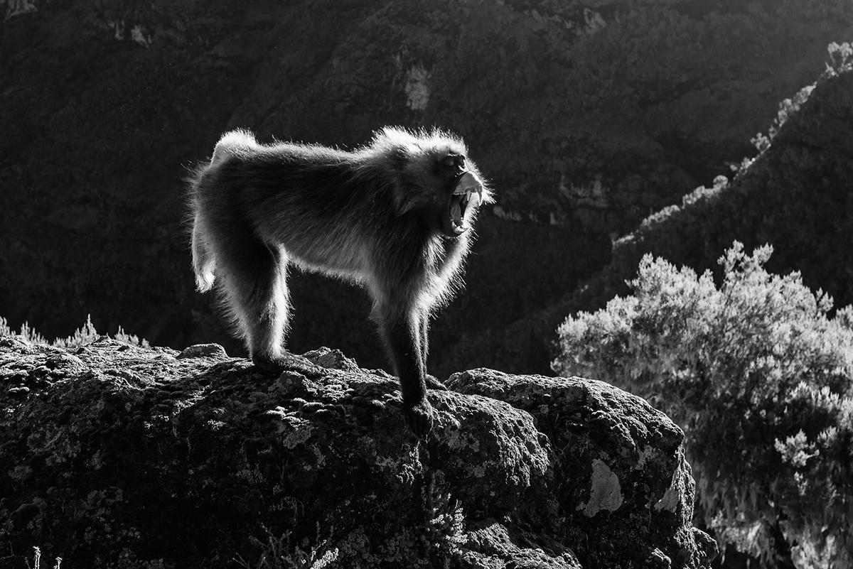 2015_ethiopia_michael_de_plaen_023
