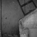 ladder - 2008